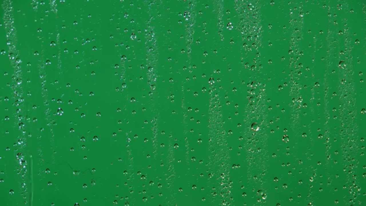 Rain Drop Wallpaper Hd Transparent Drops Of Rain Stock Footage Alpha Png
