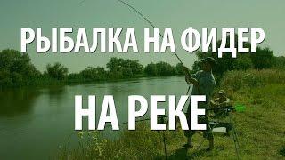 Ловля на фидер на реке - рыбалка на Волге различной рыбы(Рыбалка на Волге используя фидер. Выбор места, как лучше устроить фидерную снасть, техника и тактика ловли..., 2015-06-21T15:05:08.000Z)