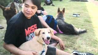 Pdlc 2nd Dog Walk April 22, 2012 @ Quezon City Circle