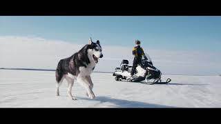 первое видео снегохода RM Vector 551i