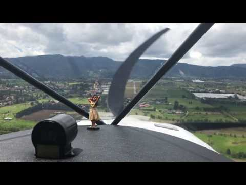 Dashboard Hula Doll Dancer Flying