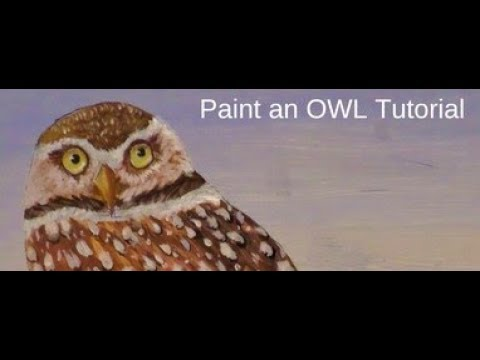 How to Paint an Owl Lesson 2, How to paint owl Eyes,  Starting the Owl