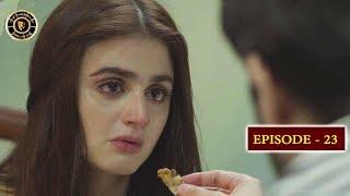 Do Bol Episode 23 | Top Pakistani Drama | Hira Mani & Affan Waheed