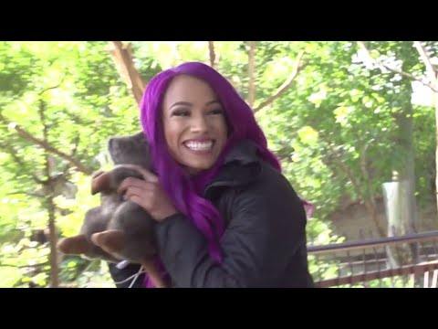 Sasha Banks hangs with Jacks, Jills and Joeys in Melbourne