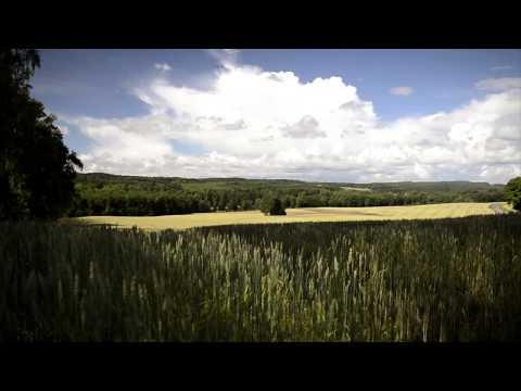 Aphex Twin - Rhubarb - Slowmo version