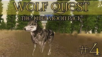 Wolf Quest 🐺 Tracking in the Pine Forests - Episode #4