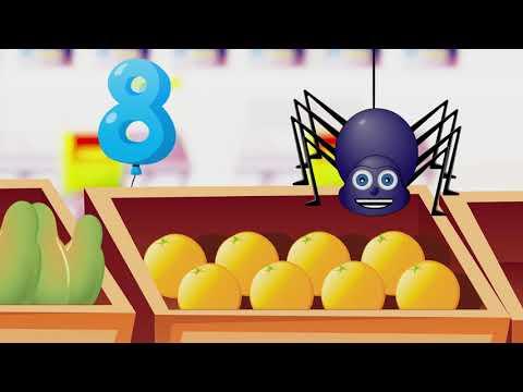 Conta Fruta Cu Nini