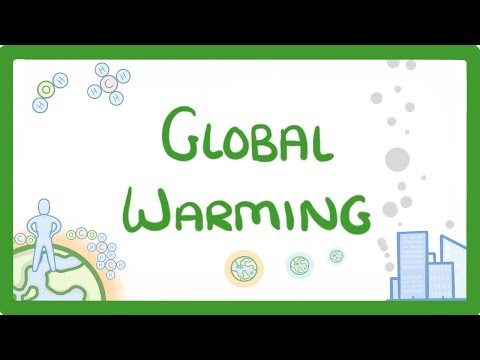 GCSE Biology - Global Warming & Climate Change  #64
