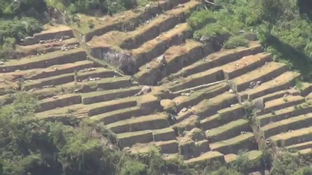 Terrazas Para Cultivos En Machupicchu Perú
