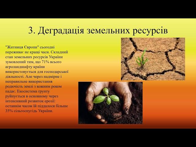 10 19   Кучер Вікторія Миколаївна