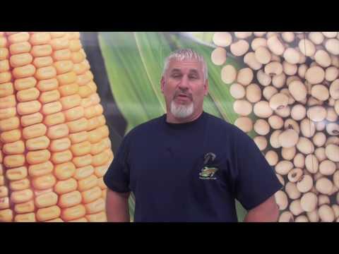 Soybean School  - World Record Soybeans -  Randy Dowdy