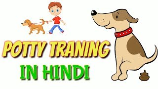 How To Potty Training your dog hindi  - Pat care hindi - at mix