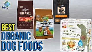 10 Best Organic Dog Foods 2017