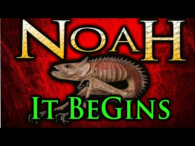 A Perspective on NoaH