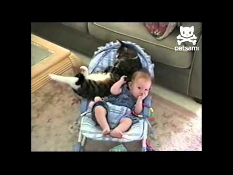 Cat Cuddles With Baby is listed (or ranked) 8 on the list 13 Funny and Cute Baby Videos
