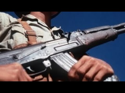 Fast and Furious: Federal Gun Smuggling Eric Holder Attorney General Testimony Part 2 (201