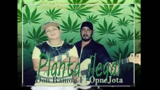 don ramon ft opnejota planta ilegal