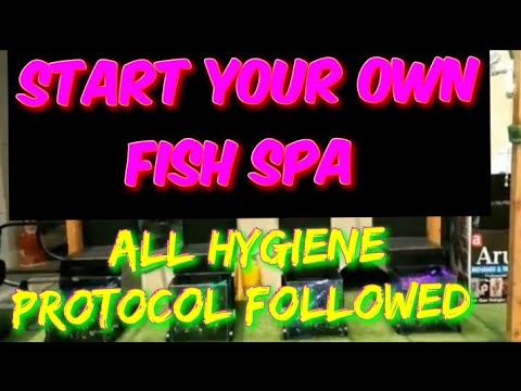 Dr Fish Spa Fish Pedicure Setup In Haryana After One Month