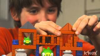 "Angry Birds ""grillin' & Chillin'"" And ""all Hams On Deck""  Building Sets"