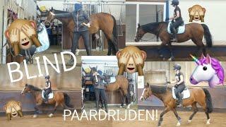 blind paardrijden wat een drama   romy oudshoorn