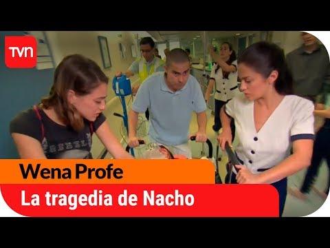 La tragedia de Nacho | Wena Profe - T1E150