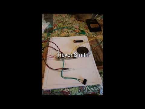 DIY Pinpointer Probe Demo