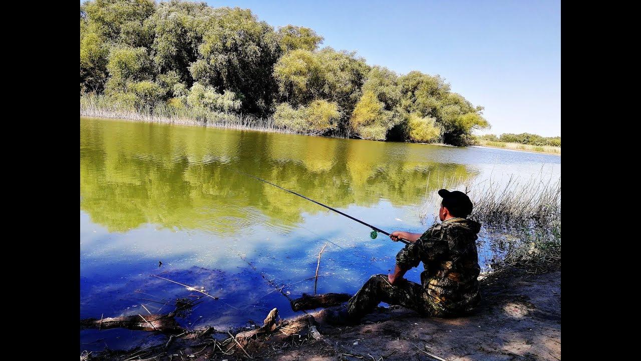 Ловля леща осенью на поплавочную удочку