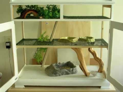 Iguana Pet Cages