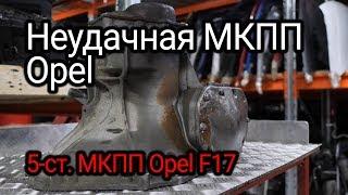 Birinchi razborochno qo'lda uzatish: biz''platistoma'' F17 Opel. muammo ochib
