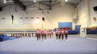 Illinois State University Competitive Cheer Bid Tape 2015