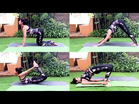 shilpa-shetty-yogasan-video-for-weight-loss-in-lockdown-|-yoga-for-beginners