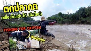 ตกปลากด Catfish เหยื่อตับไก่!! หมายช่วงน้ำหลากฝายน้ำล้น (มือใหม่) ทำเมนูปลากด!!
