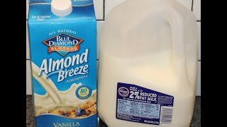 Almond Milk vs 2% Milk – Blind Taste Test