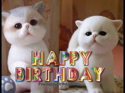 happy-birthday-wishes-by-adorable-cats