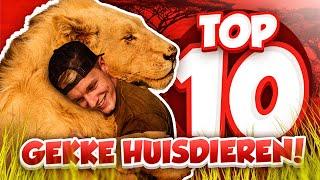 TOP 10 GEKKE HUISDIEREN! - Minecraft Survival #60