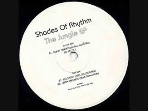 Shades Of Rhythm - Sweet Sensation - Ray Keith Remix