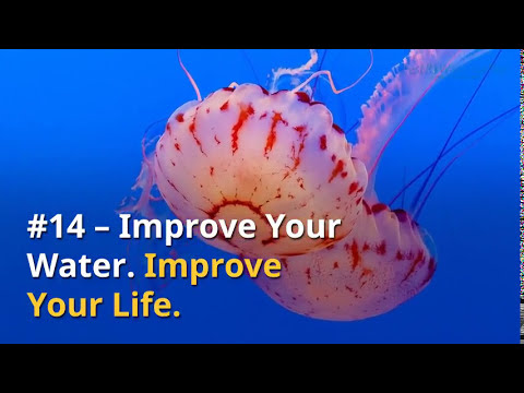 Water Quotes - Best Inspirational Quotes about Water
