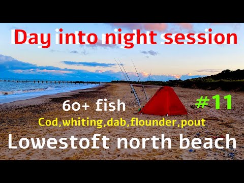 Sea Fishing UK Lowestoft North Beach Mixed Species Caught 60+ Fish