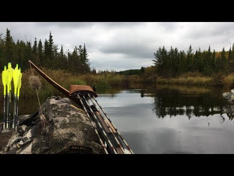 Bowhunting Moose With LongBow