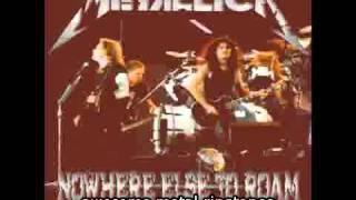 Awesome Metallica Live St. Jakob Stadion Basel Switzerland 1993 wherever i may roam