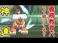 神速のランドロス vs 義務教育PT【ポケモンUSUM/ウルトラサン・ウルトラムーン】