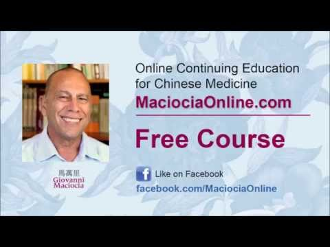 Giovanni Maciocia Lecture on Shen & Hun in Chinese Medicine