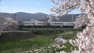 【2017 桜と列車コラボ】~E257系とE351系~