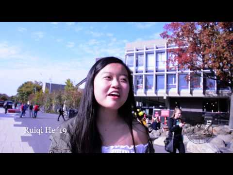 Harvard Students on the 2016 Elections