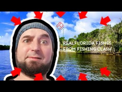 Fishing Clash Florida Fishes in Real Life. Compilation of all Species available on Florida Fishery