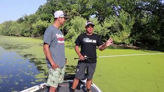 How Dean Rojas skips and CURVES a frog - bass fishing physics