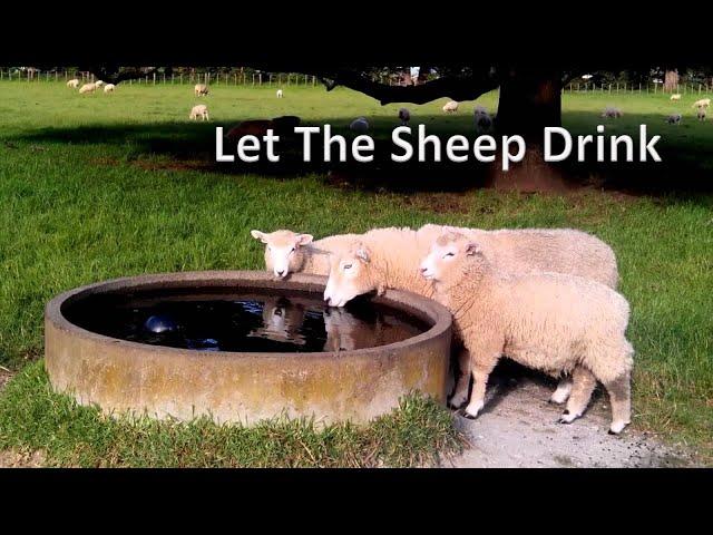 Let the Sheep Drink - Pastor Chris Sowards