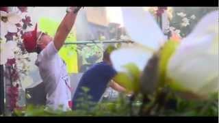 Dimitri Vegas & Like Mike & Moguai - Mammoth (Tomorrowland vocal mix)