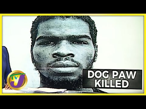 Alleged Gangster, Dog Paw, Killed by Police | TVJ News - Oct 11 2021