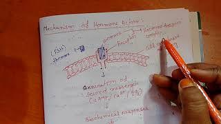 Mechanism of hormone action class 11...
